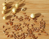 article preview  - Flax Seed - Small Seeds With Healthy Benefits