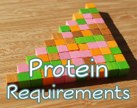 article preview  - Protein Requirements Including For Muscle Gain